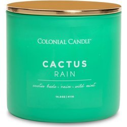 Colonial Candle Pop of Color large soy scented candle 3 wicks 14.5 oz 411 g - Cactus Rain